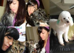 Dani tem mais alguns filhos, mas esses são os que foram batizados com nomes Disney: Ariel, Aurora, Alice, Sebastião e a poodle em destaque Esmeralda.