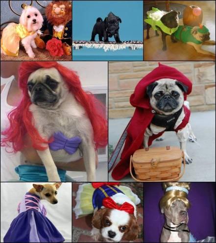 cachorrosfantasiados
